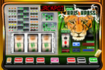 Powerjackpot Gokkast kriskross